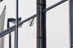 Demo Pro NRW Rat der Muslime: auch eine gläserne Hausfassade wurde getroffen Foto: Roland Kohls